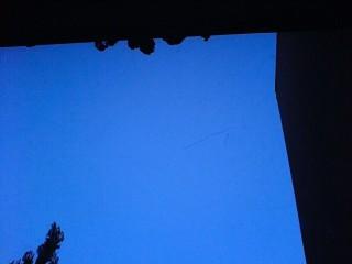 bird flock1 320x240 Significant birds